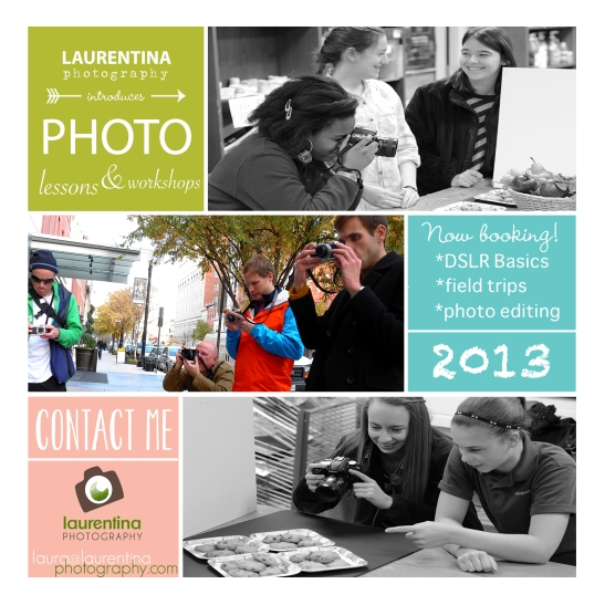 photography workshop, private photography lessons, DSLR basics, editing, field trips