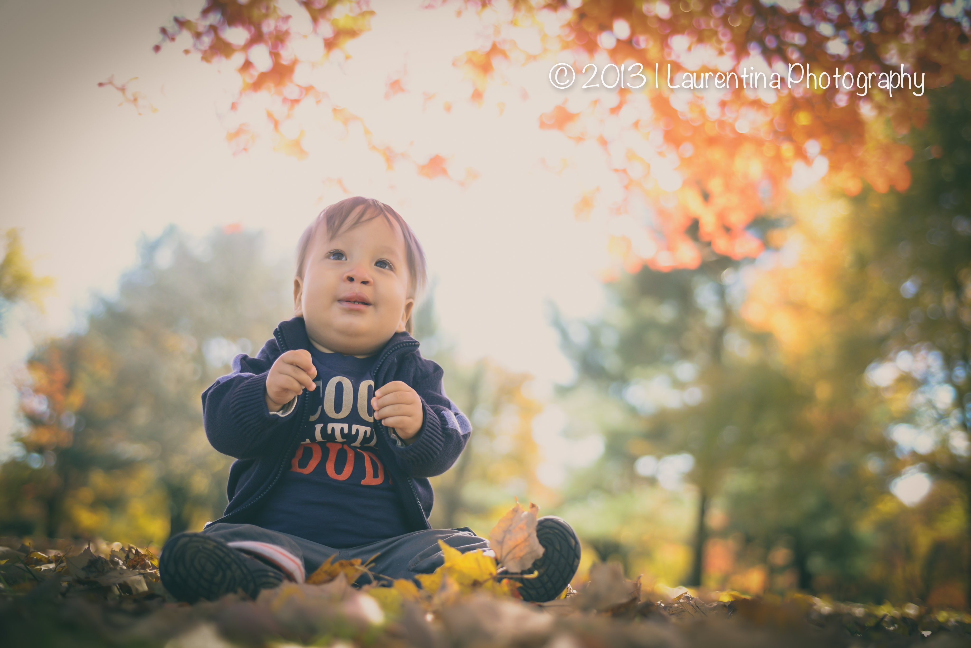1 Year Old 12 Months Toddler Fall Pictures Portraits