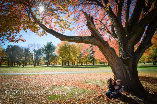 1 year old, 12 months, toddler, fall pictures, fall portraits, fall foliage, autumn, leaves, trees, golf course, algonkian park, sterling, northern virginia, child photographer, mommy and me, mother and son