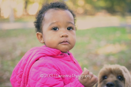 holiday photo, holidays, fall family fun, dog, flurry friend, brother, sister, african american, family, five people, mommy, daddy, dad, mom, son, boy, 12 months, rock creek park, mini session, fall pictures, fall portraits, national park service, fall mini session, foliage, leaves