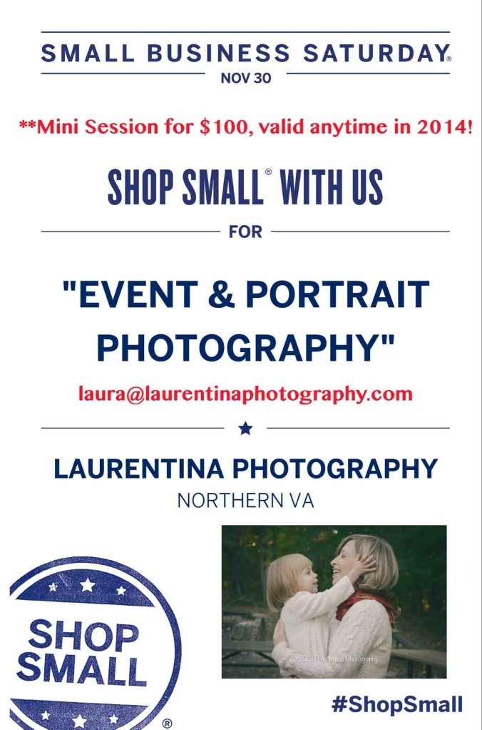 small business saturday, northern virginia, portrait photography, mini session, shop small, reston, family photography, custom photography