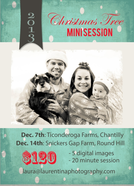 holiday mini shoot northern va, facebook banner templates for paint, gap in christmas tree lights, christmas mini sessions md 2013, christmas tree farm, christmas mini session, ticonderoga farms, snickers gap christmas tree farm, fairfax county, loudoun county, children photography, family photography, child photographer, pet friendly, family fun, winter activities