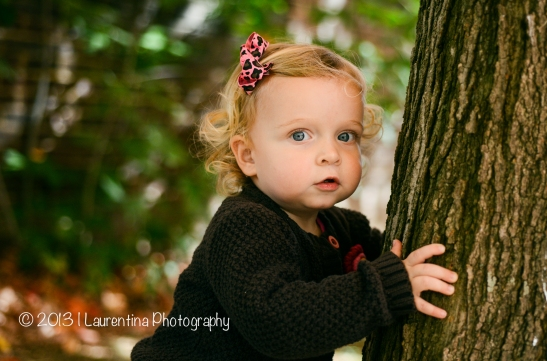 2 year old, fall mini session, northern virginia, old town alexandria, waterfront, marina, pumpkin, portrait, children photography, holiday mini shoot northern va, facebook banner templates for paint, gap in christmas tree lights, christmas mini sessions md 2013
