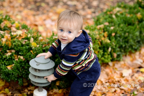 family, old town alexandria, carlyle house gardens, fall mini session, one year old portraits, one year old pictures, fall pictures, gazebo, brown bear brown bear, pumpkin, gourd, paint the moon, etsy, cow jumping over moon, little family, holiday mini session, christmas shoot, christmas card