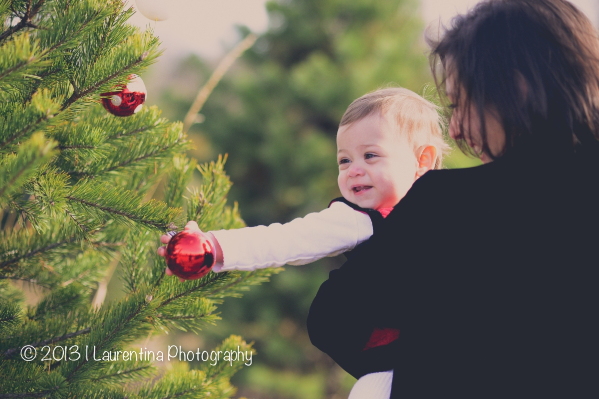 Christmas Tree Mini Session | Ticonderoga Farms | South Riding Family Photographer