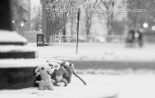 three, little, ugly doll, DIY, italian, monsters, reston town center, snowy day, polar vortex, january, snow, 2014, winter, lensbaby, lensbaby edge optic 85